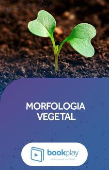 Morfologia Vegetal